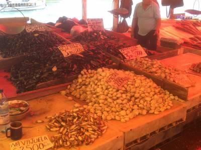 Fischmarkt in Valdivia - 1