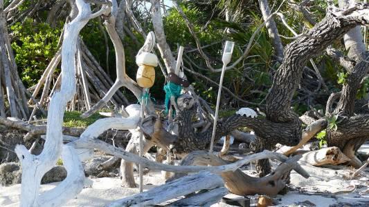 Plastik im Südpazifik